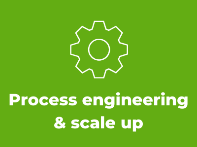 Process engineering & scale up